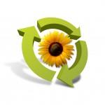 flowercomp copy